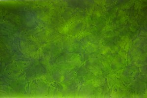 Glaskeramik Grün